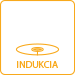 SK_indukcia